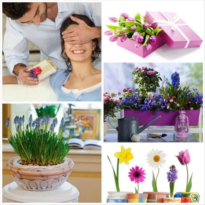Оригинальные подарки для женщин к 8 Марта