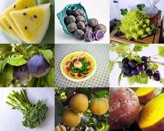 Растения-гибриды в вашем огороде
