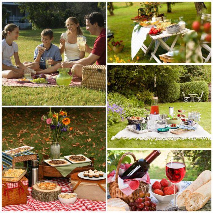 Как провести пикник на природе