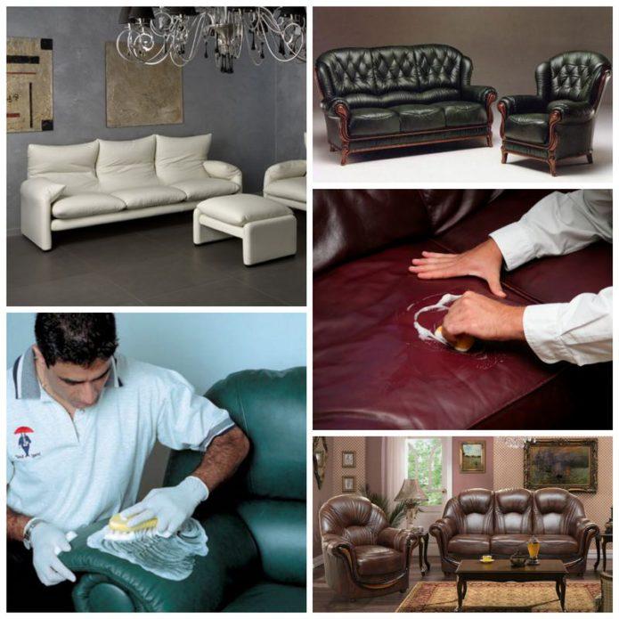 Мебель из кожи - простые правила ухода