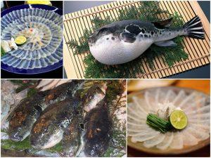 Кто такая рыба Фугу